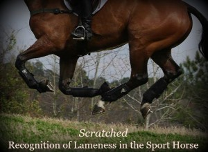 Scratched - Recognition of Lameness in the Sport Horse