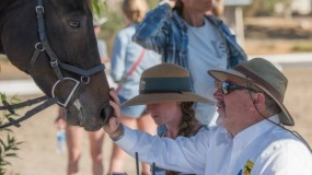 Don Trotter: USEA's Volunteer of the Month Presented by Athletux