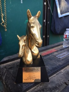 The McKinlaigh Trophy for Irish Sport Horse of the Year